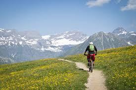 Stay on Course (mountain biking)